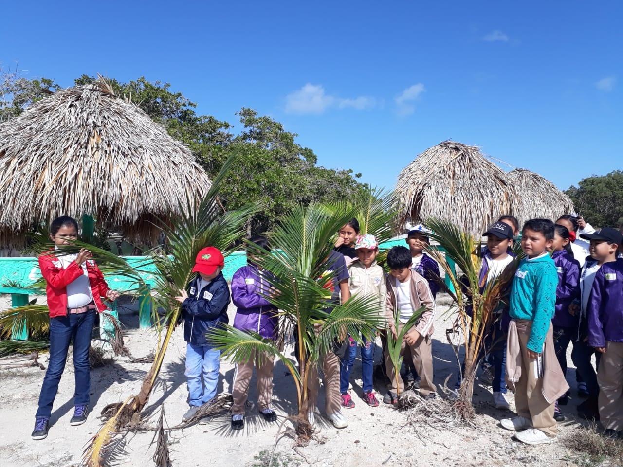 Alumnos de primaria reforestan el balneario Chiquilá