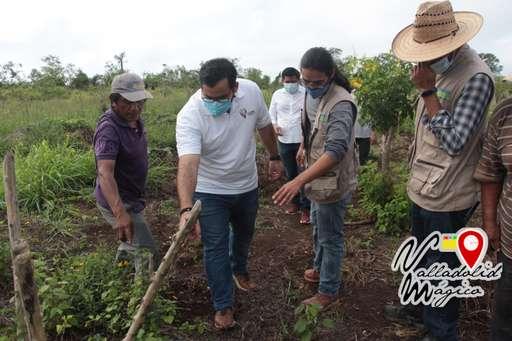 Alcalde, Enrique Ayora Sosa, realiza visita a viveros, en donde se produce, generan empleos y se cuida el medio ambiente